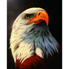 White Eagle 5D Diamond DIY Painting Craft Vulture Animals Diamond Embroidery Full Drill Rhinestone Needlework Home Decor