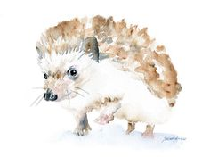 Hedgehog Watercolor Note Card Set by SusanWindsor on Etsy, $9.00    I love this!