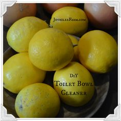 DiY Toilet Bowl Cleaner