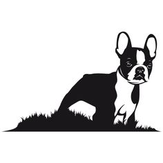 boston terrier silhouette clipart free clip art images bt rh pinterest com boston terrier clipart boston terrier clip art images