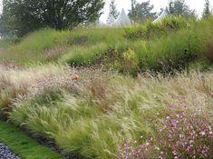Gartenkonzepte by Peter Janke Landscaping Plants, Outdoor Landscaping, Outdoor Gardens, Small Gardens, Prairie Garden, Cottage Garden Design, Natural Garden, Garden Planning, Lawn And Garden