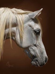 Above is Mayssa 1991 grey mare . Art by Naumovich S.N. drawn in SAI