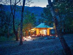 Kohima Luxury Camp