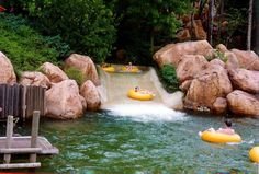 adventuresbylinsey:  River Country, 1993