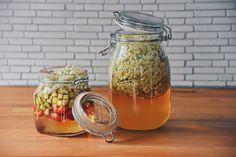 Es ist wieder soweit, der Holunder blüht! Wer die Holunderblüten gesammelt hat kann mehr als nur Sirup machen, vom Sirup findet ihr am Blog bereits ein Rezept ohne der Zugabe von Zitronensäure. Aber diesmal wird Holunderblütenessig angesetzt und auch mit Erdbeeren und Rhabarber kombiniert. Der Essig ist fein würzig und aromatisch, zudem ist er super schnell und einfach gemacht! Organic Recipes, Blog, Strawberries, Vinegar, Syrup, Simple, Blogging, Organic Dinner Recipes