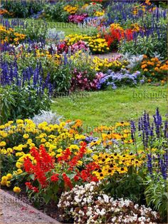 44 Pretty Cottage Garden Border Ideas Awesome Pretty Cottage Garden Border Ideas 98 Image Cone Flowers Rudbeckia Sages Salvia and Marigolds Ta Es and 7 The post 44 Pretty Cottage Garden Border Ideas appeared first on Flowers Decor. Plants, Backyard Garden, Garden Shrubs, Beautiful Flowers Garden, Garden Planning, Flower Garden Design, Garden Design, Cottage Garden, Cottage Garden Borders