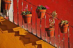 Flower ports - Guanajuato Mexico. Photo by David Arrastia