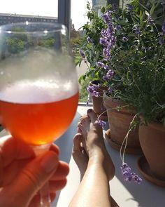 Drømmer mig tilbage til Provence.