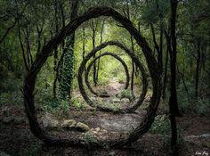 Todas essas fotos são 100% reais!- Esculturas nz floresta- por Andy Goldsworth