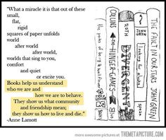 Books explained… Anne Lamott wrote a book called Bird by Bird which is about writing your own books. One of the best books about writing I've ever read. I've read quite a bit but this one actually made me want to start writing. I Love Books, Good Books, Books To Read, My Books, Deep Books, Reading Quotes, Book Quotes, Me Quotes, Library Quotes