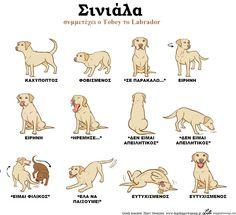 © Lili Chin Greek translate: Harry Stouraitis (www.dogshappytraining.gr)