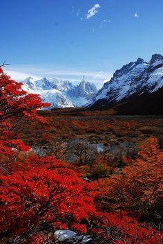 Parque Nacional Los Glaciers, Patagonia, Argentina