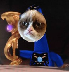 Heeheehee our poor fandom | Grumpy Pythor by TimeLordNinja.deviantart.com on @deviantART