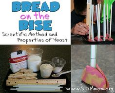 Bread Lab: to teach scientific method & properties of yeast.