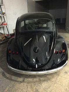 Black Kafer Devil