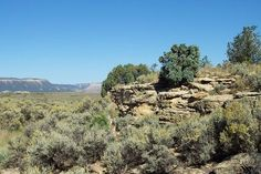 Interesting Rock Formations On Unique Property - Chama New Mexico PROPERTY NUMBER:30014-27020PRICED AT: $19,000.00 United Country