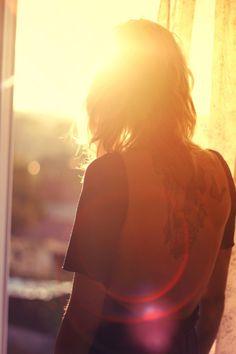in the sunlight