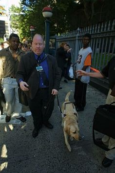Man saved from 85 floor by service to the blind dog