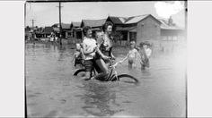 1955 Maitland flood NSW This is why my nan lost everything. Now I live in Maitland 60 years later. Maitland Nsw, Australian Road Trip, Dark Stories, Newcastle Nsw, Losing Everything, Family Memories, Road Trips, Old Photos, Street View