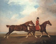 A Saddled Bay Hunter - George Stubbs - WikiPaintings.org