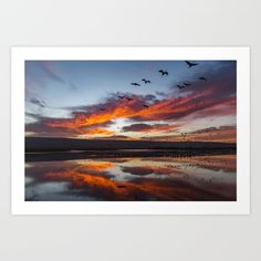 Buy Sunrise Cranes Art Print by DiegoRosman. Worldwide shipping available at Society6.com. Just one of millions of high quality products available.