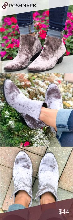 FINAL PRICE! Crushed Suede Booties On trend, gorgeous crushed Suede booties. Gold zipper closer. Pair these with anything in the soft Heather grey tone. Shoes Ankle Boots & Booties