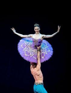Svetlana Zakharova and Mikhail Lobukhin in Le Corsaire Bolshoi Ballet, Ballet Dancers, Ballet Couple, Purple Tutu, Ballerina Tutu, Svetlana Zakharova, Dance Movement, Ballet Photography, Dance Art