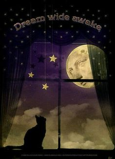 Moon and black Cat ~