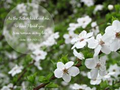 40 Words of Lent 2014: Day 20 - Remain in my love. http://sandraheskaking.com/2014/03/40-words-lent-2014-day-20/ #LentChallenge