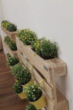 Orto sul balcone: come realizzare un angolo verde con i pallet