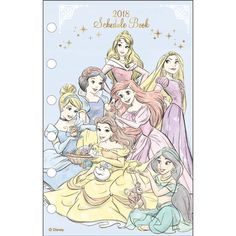 2018 Disney Princess LV Agenda Refills Organizer Pages Party Made in Japan