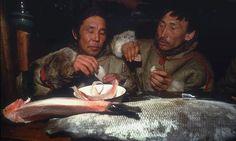 Halk, yakaladıkları balıkları dondurucuya atıyor ve ileride taze taze yemeye devam ediyor.
