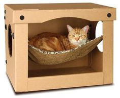SnoozPal Cat Hammock. Cats love boxes. Cats love hammocks. Cats love looking ridiculous. It's brilliant.
