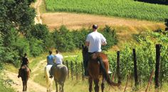 Half-Day Horseback Riding Tour from Florence