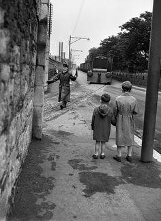 Guinness Train Photograph by Irish Photo Archive