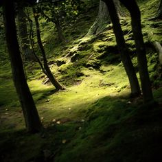 Tera.http://thestars-themoon.tumblr.com/page/8