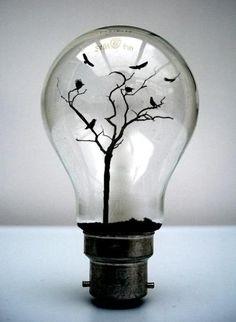 Light bulb bird world
