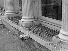 UNCONSCIONABLE The homeless spikes