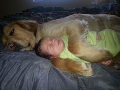 Babies make great snuggle buddies