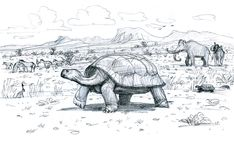 Giant Tortoise (Hesperotestudo) in an Ice Age Colorado desert landscape with Columbian Mammoths (Mammuthus columbi) and Horses
