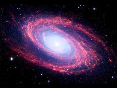 The magnificent spiral arms of the nearby galaxy Messier 81 are highlighted in this NASA Spitzer Space Telescope image. Located in the northern constellation of Ursa Major (which also includes the Big Dipper). Interstellar, Alpha Centauri, Spitzer Space Telescope, Other Galaxies, Galaxy Pictures, Nasa Pictures, Spiral Galaxy, Galaxy Galaxy, Galaxy Space
