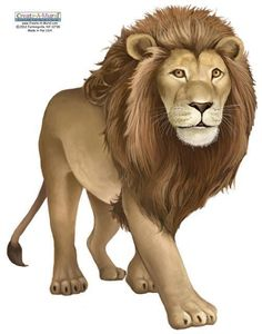 Lion Mural Decals-Large wall stickers of lions to easily design a lion kids bedroom or playroom. Lots of themes & ideas for lion wall decor. Animal Sketches, Animal Drawings, Lion Tigre, Ram Wallpaper, Large Wall Stickers, Tiger Images, Farm Animal Crafts, Lion Drawing, Animal Doodles