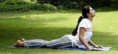 #yoga #yogi #yogapose http://www.artofliving.org/br-pt