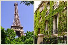 MY PARIS EXPERIENCE - LA MIA ESPERIENZA PARIGINA | Calendula e Camomilla