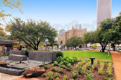15 of the most captivating photos of our beautiful city Houston, TX