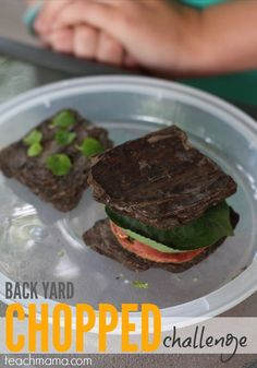 Try this super fun back yard 'Chopped' challenge: get kids outside, thinking, moving, and making dishes out of what's in the back yard. It's what's for dinner (not really)! #teachmama #chopped #foodnetwork #summerfun #outdooractvities #outdoorfun #learningactivities #kidsactivities