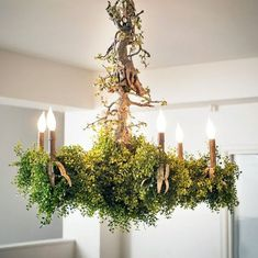 This Ceiling Chandelier is Covered Shrubs and Greenery Bedroom Decor Design, Canopy Design, Stylish Chandelier, Ceiling Chandelier, Chandelier Bedroom, Modern Chandelier, Canopy, Enchanted Garden, Hanging Pendant Lights