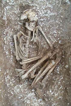 The Amesbury Archer's Companion by Wessex Archaeology, via Flickr, this is the Bronze Age skeleton of a man found buried at Stonehenge, Wiltshire. He is thought to have been murdered, archeologists found that he had been shot by numerous arrows. They also think that he went there hoping to find relief from his leg injury which must have caused him great pain for years. He may have been shot for trying to steal some of the healing blue stone which Stonehenge is made from.