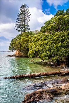 Howick Beach Auckland New Zealand- used to go swimming here after school Tasmania, New Zealand Landscape, Auckland New Zealand, Sport Sport, Kiwiana, The Beautiful Country, Urban, Far Away, What Is Like