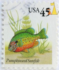 Welcome to Stamps Collector Catalogue, Pumpkinseed Sunfish